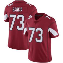 Men's Max Garcia Arizona Cardinals Men's Limited Cardinal 100th Vapor Nike Jersey