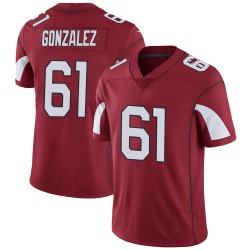 Men's Steven Gonzalez Arizona Cardinals Men's Limited Cardinal Team Color Vapor Untouchable Nike Jersey