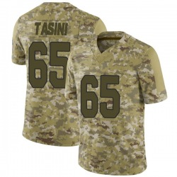 Pasoni Tasini Arizona Cardinals Men's Limited 2018 Salute to Service Nike Jersey - Camo