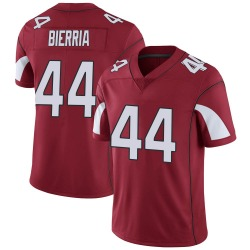 Youth Keishawn Bierria Arizona Cardinals Youth Limited Cardinal Team Color Vapor Untouchable Nike Jersey