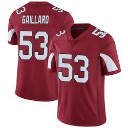 Youth Lamont Gaillard Arizona Cardinals Youth Limited Cardinal Team Color Vapor Untouchable Nike Jersey