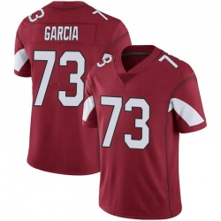 Youth Max Garcia Arizona Cardinals Youth Limited Cardinal 100th Vapor Nike Jersey